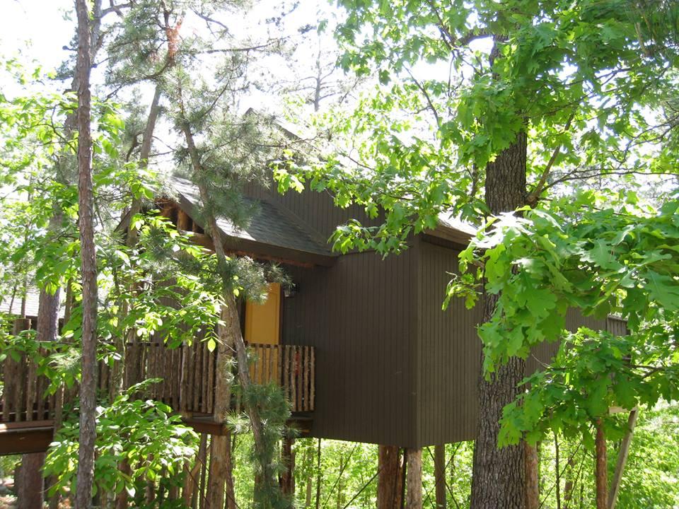 las mejores casas del árbol del mundo donde hospedarte