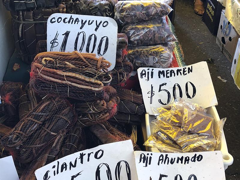 qué hacer en Valdivia