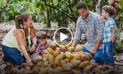 Qué hacer en República Dominicana