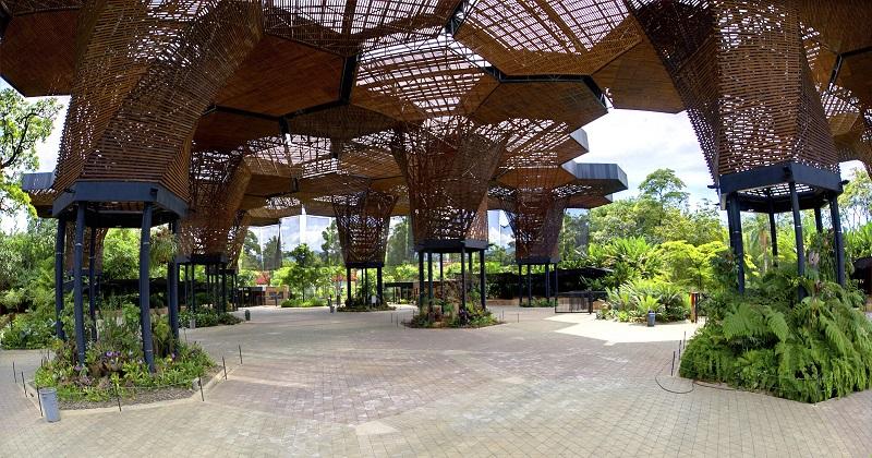 20 cosas qué hacer y qué ver en Medellín