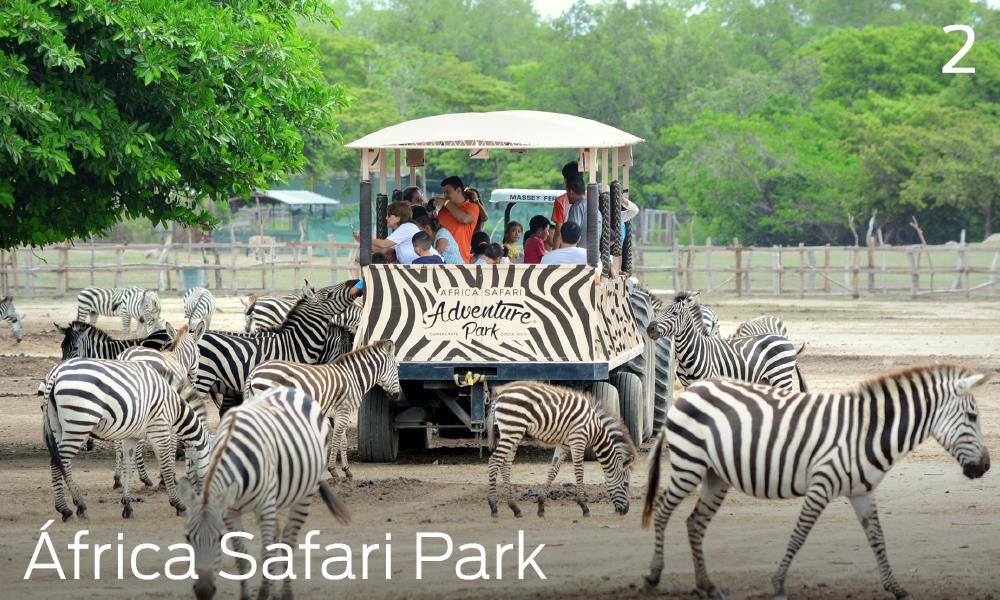 Que hacer en Liberia, Costa Rica, Áfrican Safari Park
