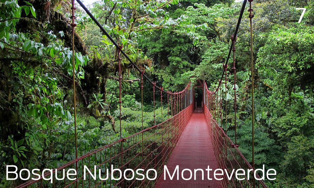 Que hacer en Liberia, Costa Rica, bosque nuboso Monteverde