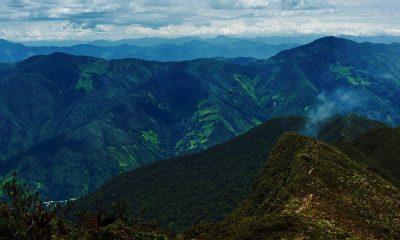 Las mejores cosas que hacer en la Amazonía ecuatoriana