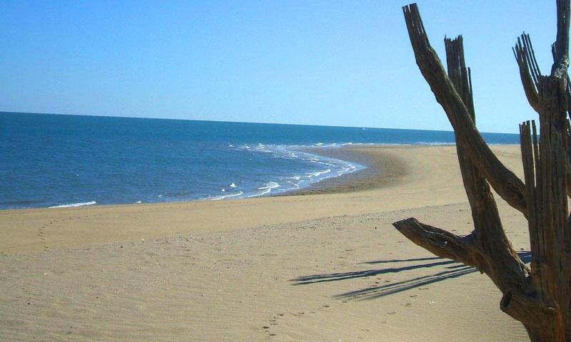 que hacer en Baja California