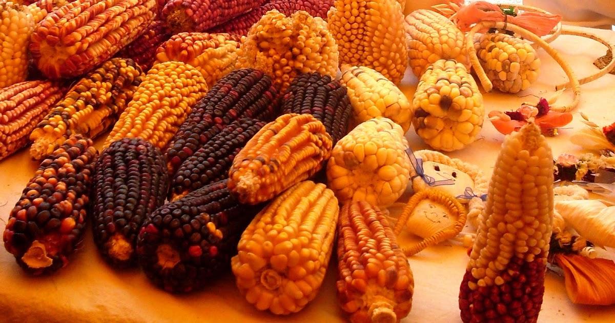 Гастрономия Тлакскалы, самые типичные блюда