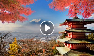 Todo lo que hay qué hacer en Tokio en tu primera visita