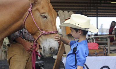 Fort Worth con niños