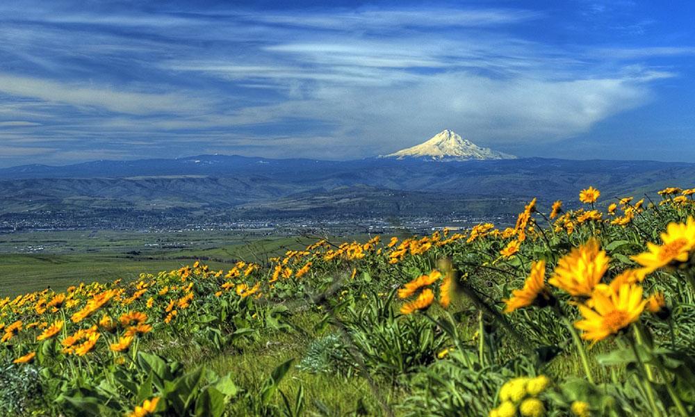 Que ver en Oregon