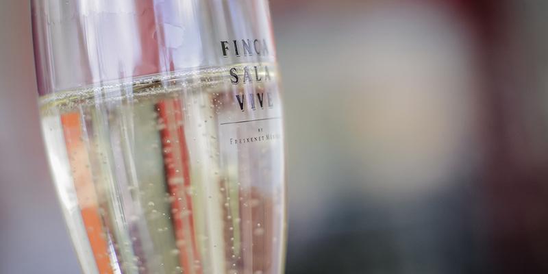 """Любитель вина?</p></div><p> Познакомьтесь с Finca Sala Viv#233; от Freixenet, в Кро"""" title=""""Любитель вина? Познакомьтесь с Finca Sala Viv#233; от Freixenet, в Кро""""/> Фото: Финка Сала Виве Если в дополнение к посещению фермы и кавы вы хотите научиться ценить и пробовать вино в качестве эксперта, это великолепный вариант Finca Sala Vivé.</p> <p> С его помощью вы попробуете три разных вина дома (белое, красное и игристое). Этот опыт предназначен исключительно для людей старше 18 лет.</p> <p><div style="""