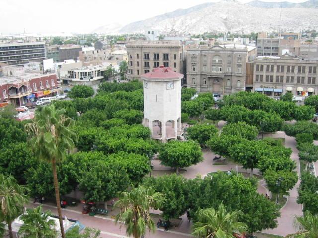 Qué hacer en Torreón