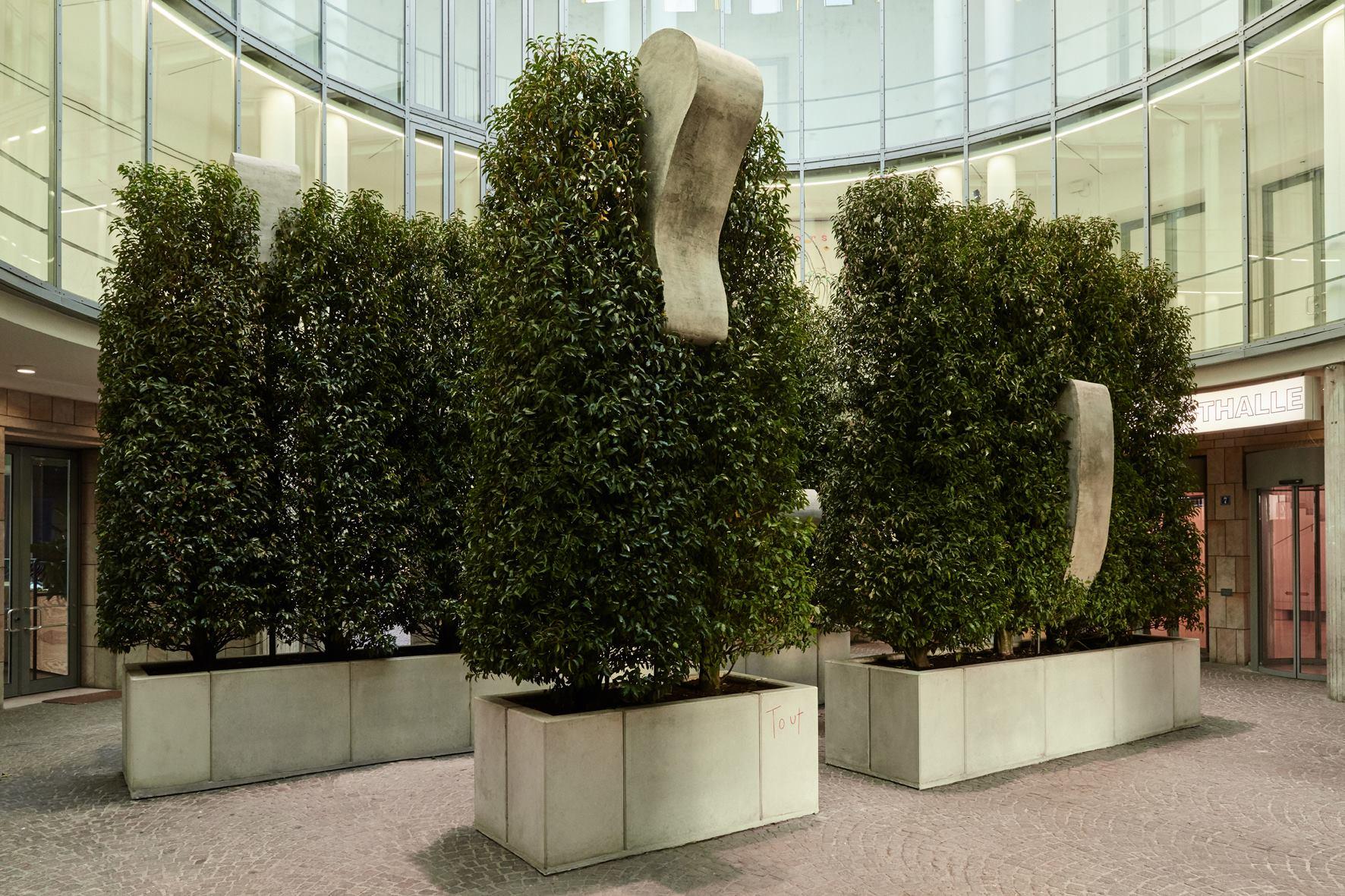 museo-tamayo-jardines