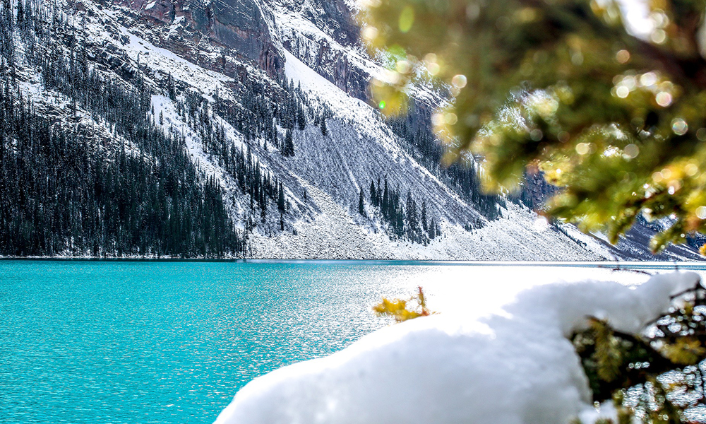 que hacer en Lake Louise