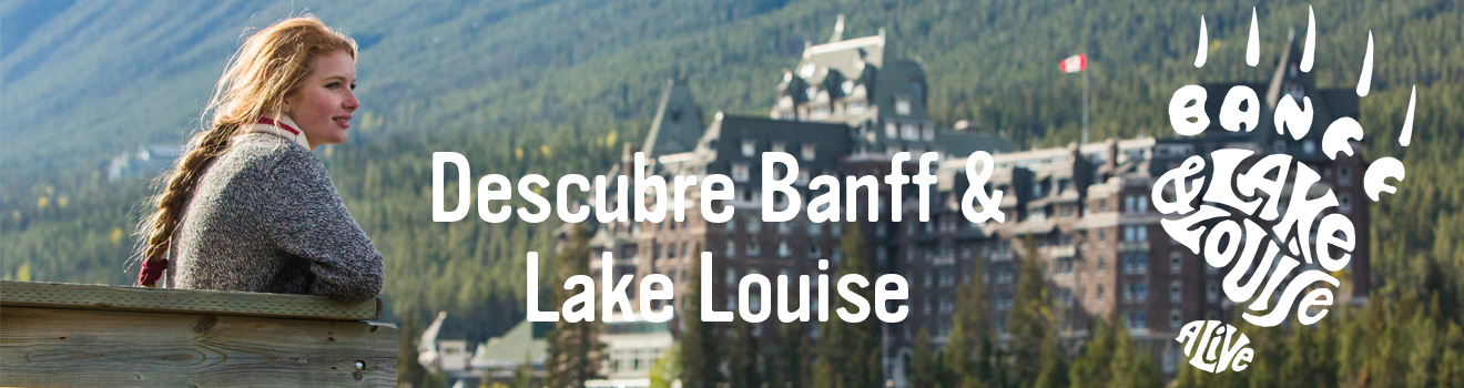 Banner Banff LL