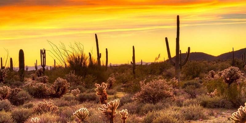 Los atardeceres de Sonora son los más bellos de México.