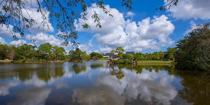 Hay que visitar este bello lugar de The Palm Beaches