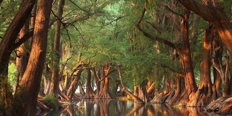 El misterio envuelve el Parque Nacional Lago de Camécuaro