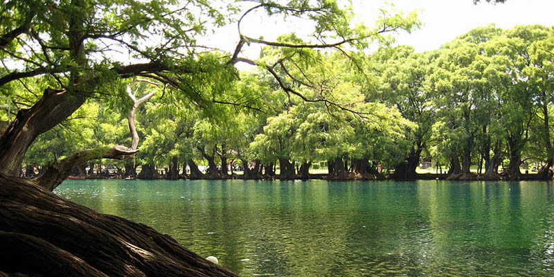 Imagina ver este paisaje del Lago de Camécuaro desde una tienda de campaña