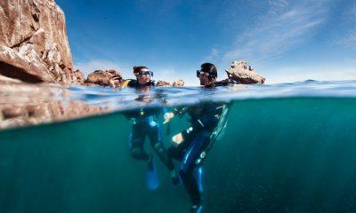 Conoce el encanto marino de La Paz