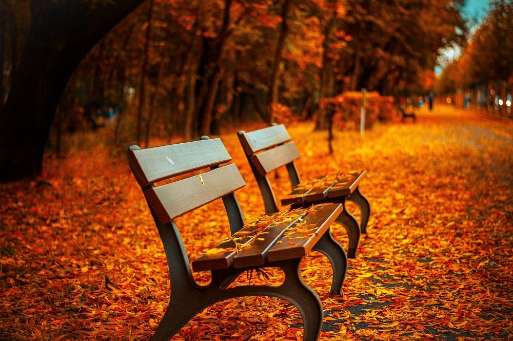 Los mejores lugares para disfrutar del otoño en Estados Unidos