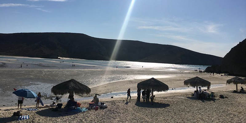 playa-balandra-visitantes