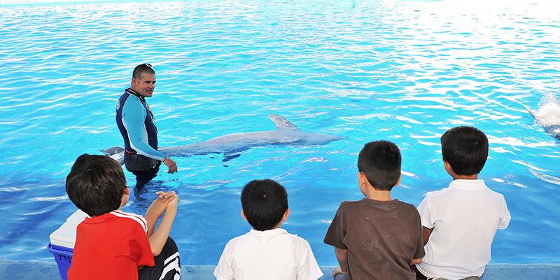Una de las actividades del acuario