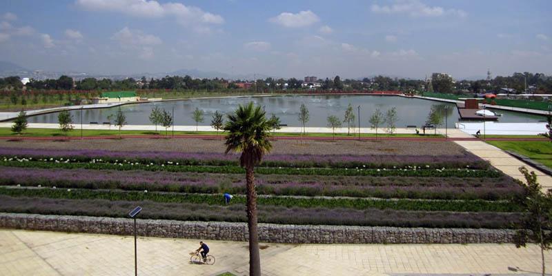 Bella lago en el parque