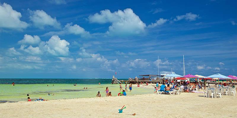 playas-de-cancun-quintana-roo-langosta