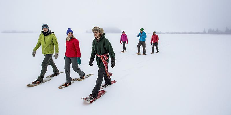 Snowshoe Edmonton