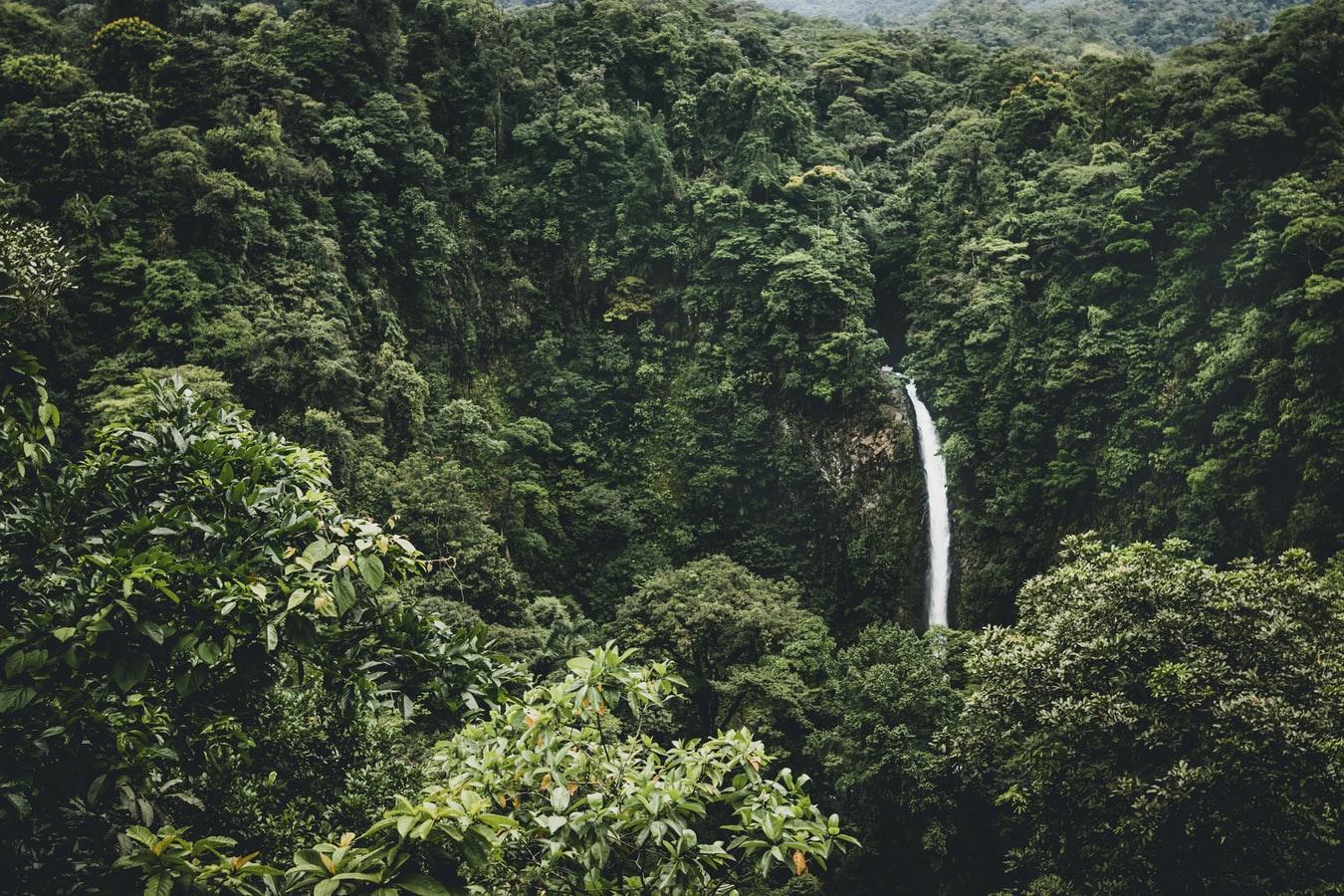 Cascadas La Fortuna