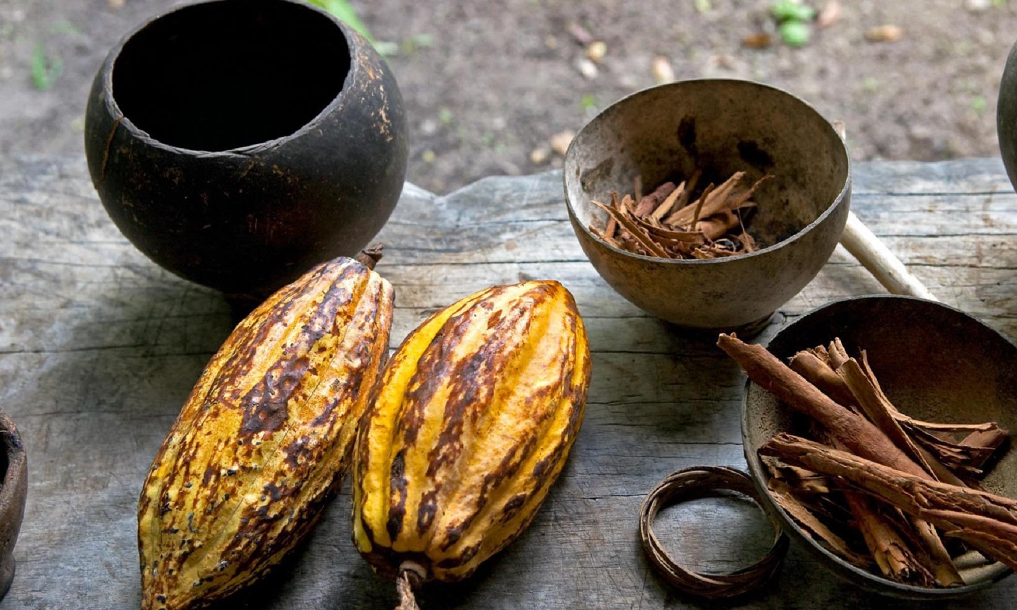 Inicia el Festival del Chocolate en Tabasco