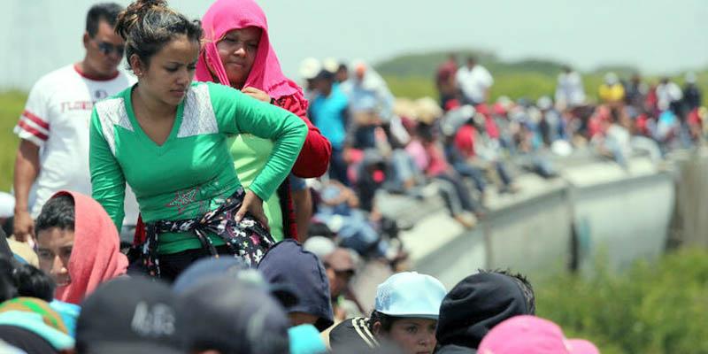 viajeras migrantes