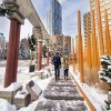 Calgary en invierno