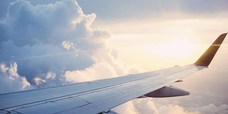 precauciones para viajar con tu perro en avión