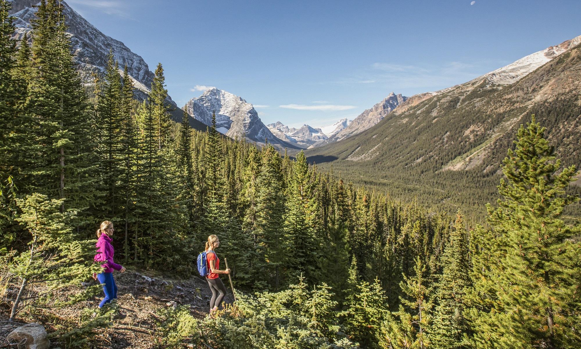 Conoce los imperdibles de Jasper, Canadá