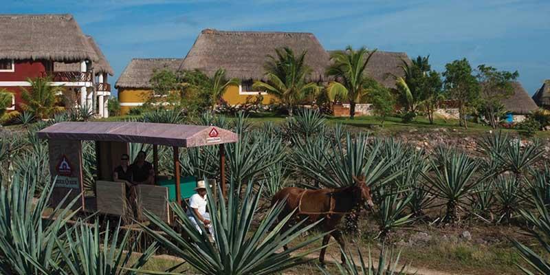 Qué ver en Yucatán