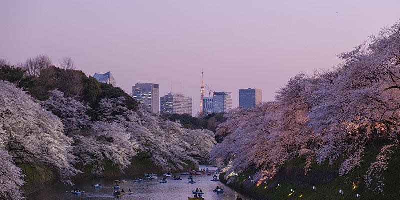 consejos para viajar a Tokio