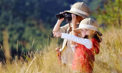 viajes para ver animales salvajes