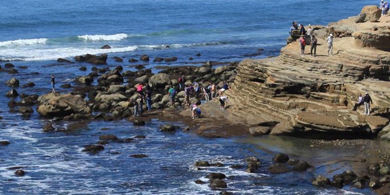 Qué hacer en San Diego : guía virtual