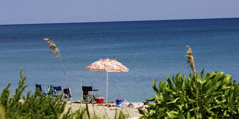 Qué hacer en The Palm Beaches
