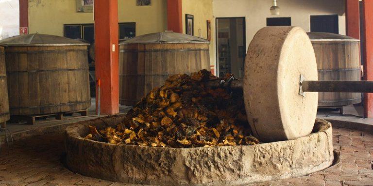 Cuánto cuesta hacer la ruta del mezcal en Oaxaca