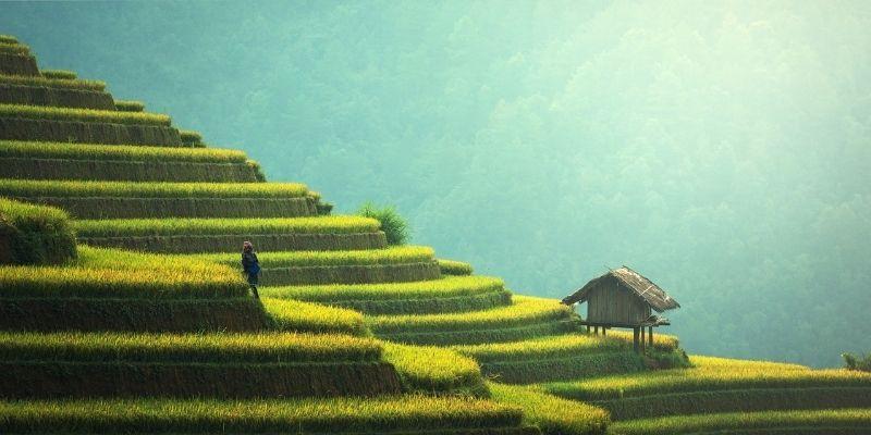 ¿Ya se puede viajar a Asia?