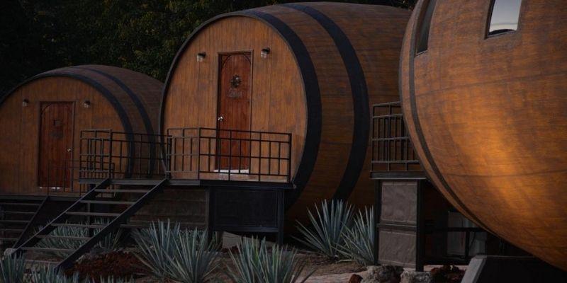 10 experiencias que solo puedes vivir en Tequila