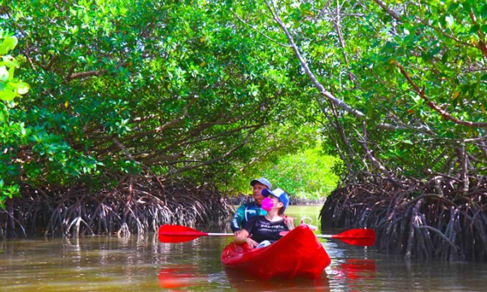 Isla Aguada Pueblo Mágico de Campeche