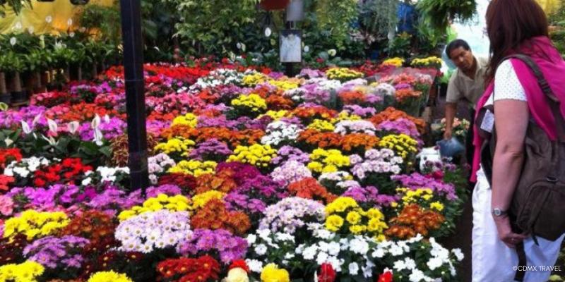mercado flores cdmx