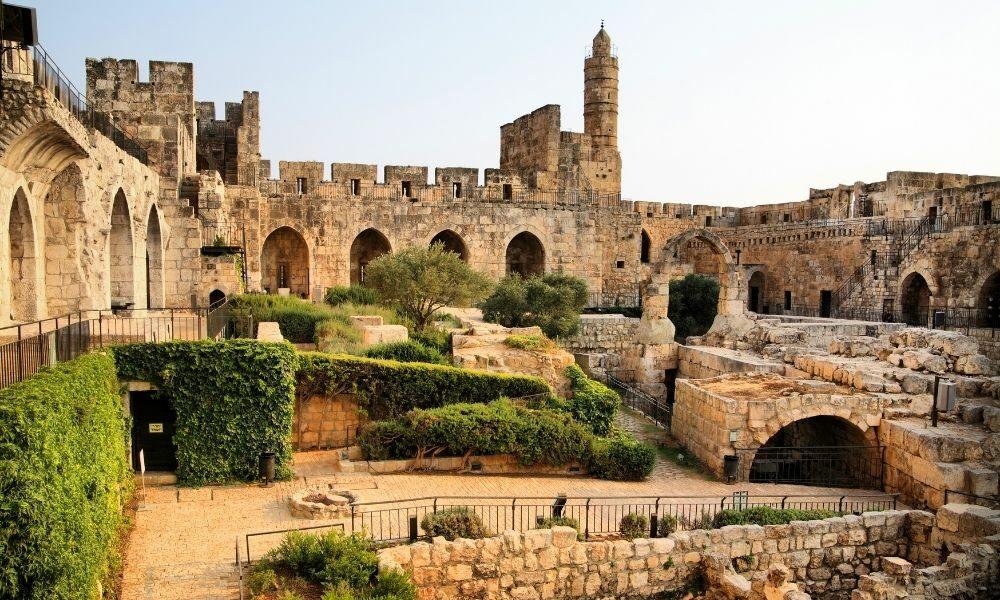 israel novedades