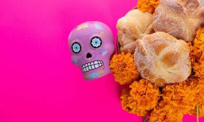 flor decempasuchi ly su significado en dia de muertos