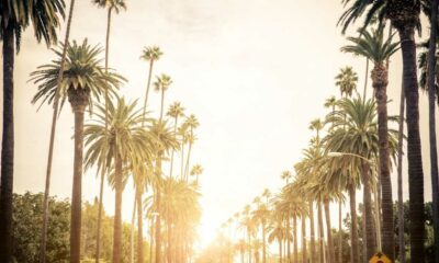 mejores hoteles para hospedarse en california